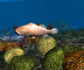 OceanDive Screenshot 1