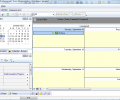 A VIP Task Manager Professional Edition Screenshot 2