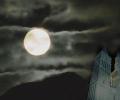 Horrorific Castle Halloween Wallpaper Screenshot 0